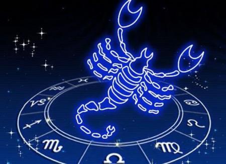 1445947876 skorpion
