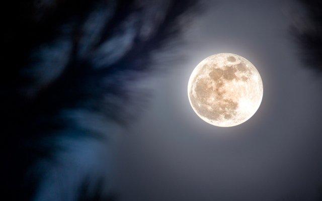 Картинки по запросу Лунный гороскоп на октябрь 2019 года для всех знаков Зодиака