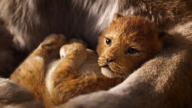 Картинки по запросу картинки лев самый обаятельный