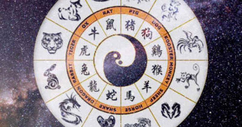 """Картинки по запросу """"Китайский гороскоп на 2020 год"""""""""""