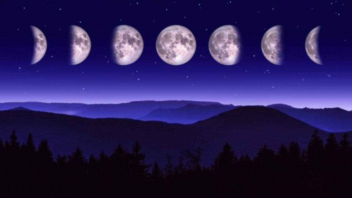 """Картинки по запросу """"Лунный календарь"""""""