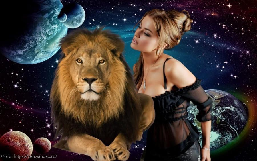 """Картинки по запросу """"зависть льва"""""""
