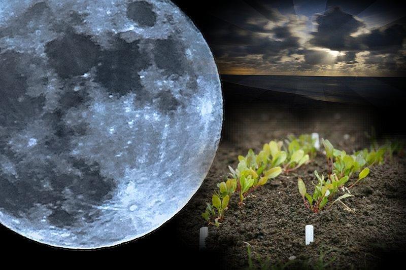 """Картинки по запросу """"Благоприятные дни в май по лунному календарю"""""""